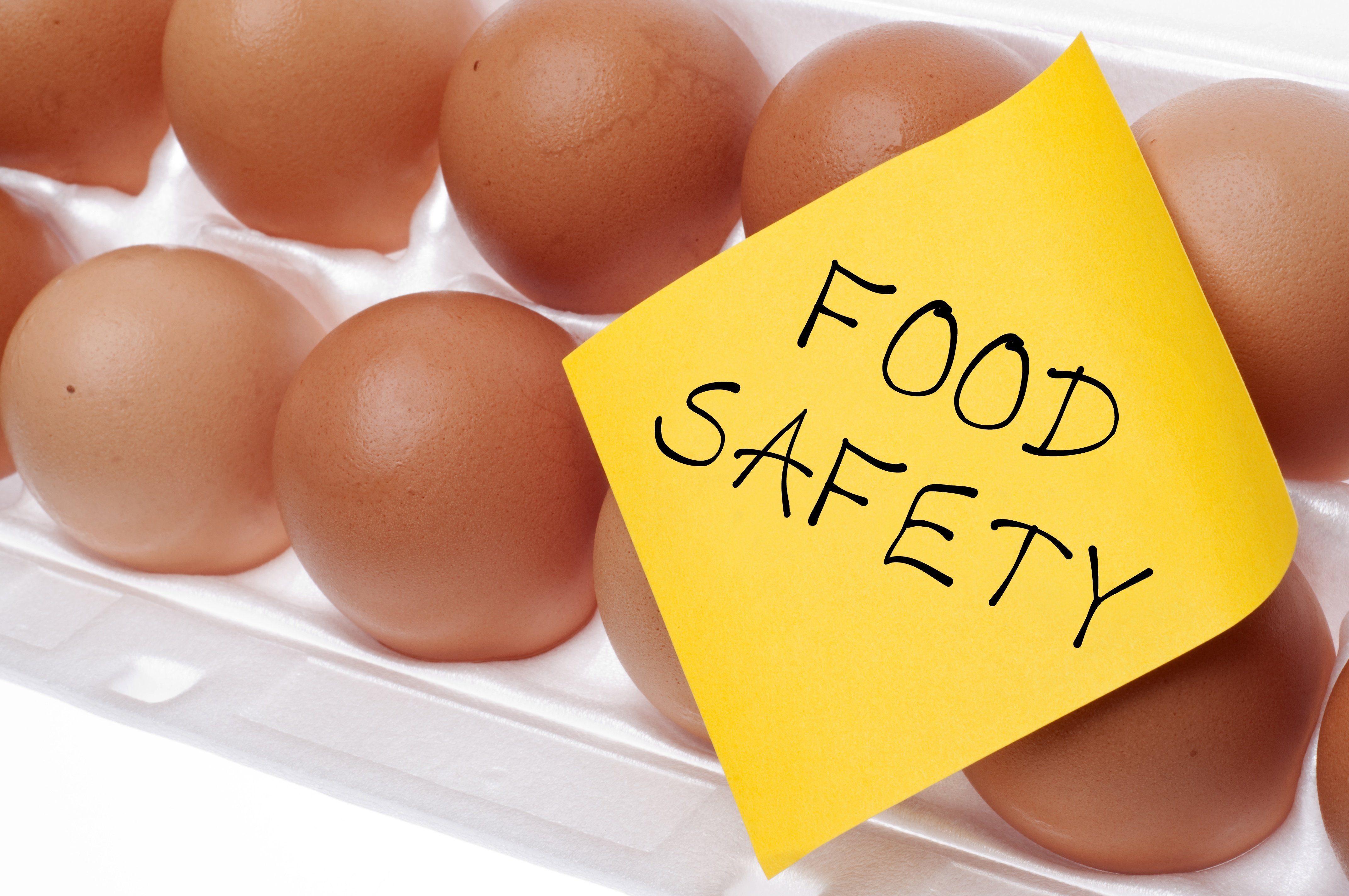 food standards in sports nutrition manufacture